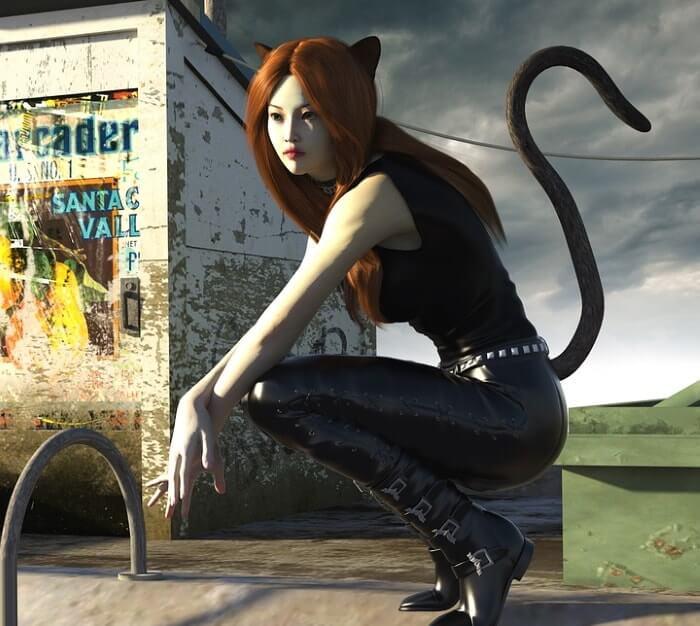 小悪魔デビルのおすすめハロウィンコスプレ1(猫)